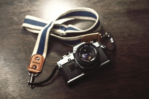 Device Camera Equipment Buckle Fastener - Free Photo 1