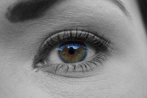 Eyebrow Eye Vision See Close Look Make Human Iris #1