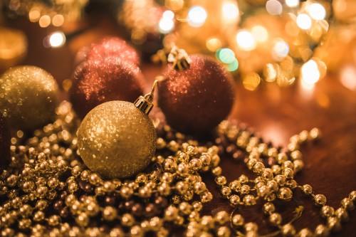 Echinoderm Invertebrate Decoration Holiday Celebration Season - Free Photo 1