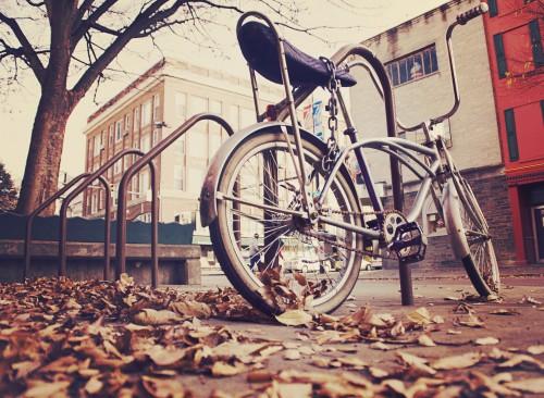 Bicycle Bike Cycle Wheel Spoke Vehicle Ride Cycling #1