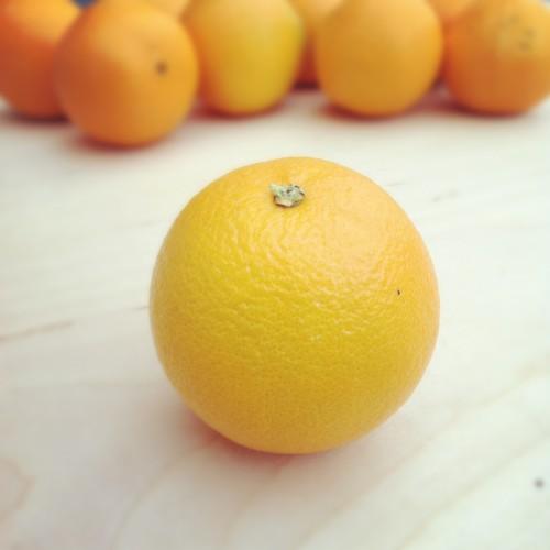 Fruit Citrus Mandarin Orange Tangerine Juicy Vitamin Kumquat Healthy Fresh - Free Photo 1