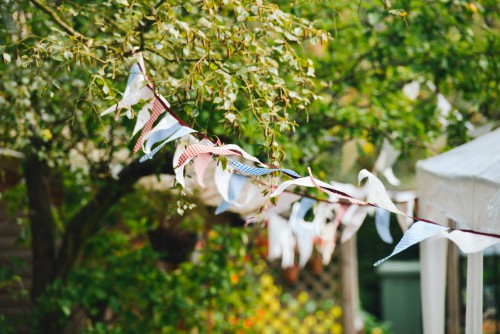 Tree Plant Shrub Branch Leaf Flower Blossom Season #1