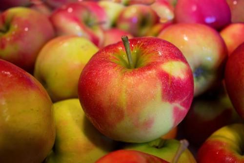 Apple Fruit Delicious Apples Diet Juicy Fresh #1