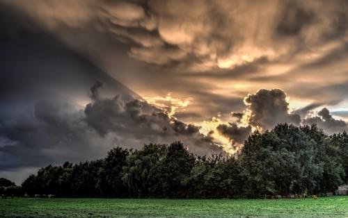 Sky Atmosphere Landscape Clouds Sunset Sun Cloud Lighting Tree #1