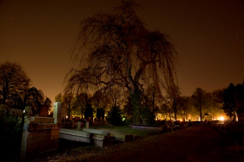 Chandelier Cemetery Lighting Fixture Night Tree Trees Landscape - Free Photo 1