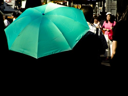 Umbrella Canopy Shelter Covering Rain Weather Protection Parasol Person #1