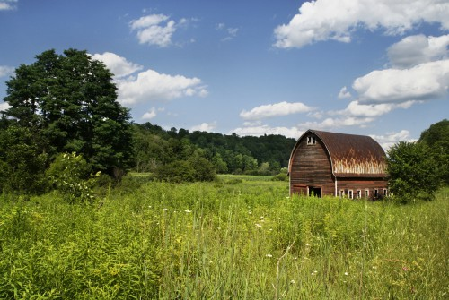 Barn Building Structure Grass Field Landscape