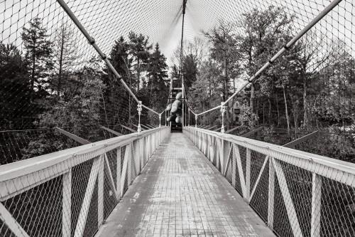 Structure Bridge Fence City Barrier Architecture Park #1