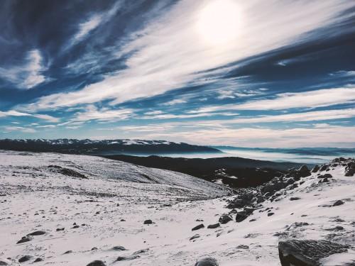 Snow Tree Forest Landscape Sky Winter #1