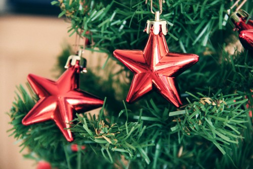 Echinoderm Starfish Invertebrate Animal Star Lily Holiday Decoration #1