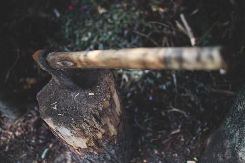 Shovel Hatchet Tool Cutter Water #1